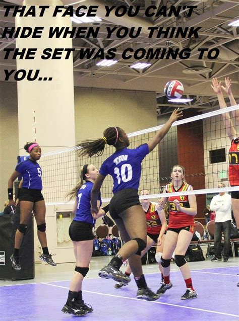 Funny Volleyball Memes - 17 best ideas about volleyball memes on pinterest volleyball volleyball problems and