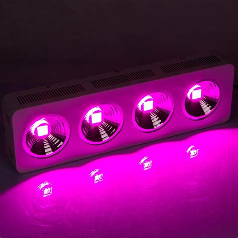 factory direct led lights stock in australia led grow light cob 800w factory direct