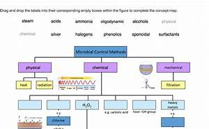 Microbial Control Methods Concept Map