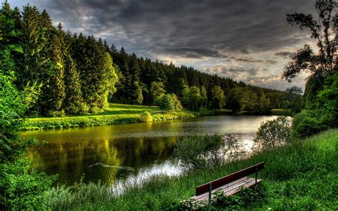Green Forest River Bench Grass Wallpapers Green Forest