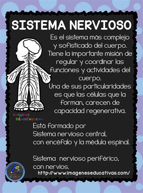 el cuerpo humano aparatos y sistemas para primaria 15