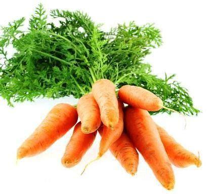 cuisiner les fanes de carottes de de radis de navets