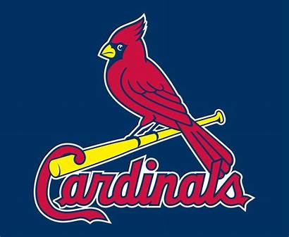 Cardinals Louis St Symbol Clipartmag