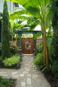 25+ best ideas about Tropical landscaping on Pinterest ...