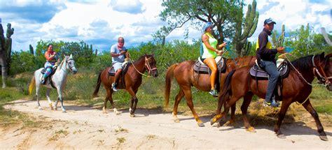 horseback cabo rides beach riding san lucas tours excursions norwegian star desert