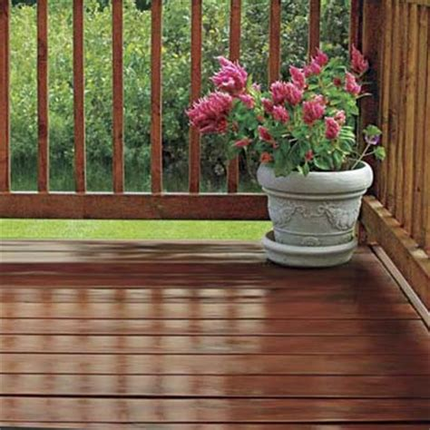 shine   exterior stain   house