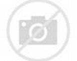 Powerful Quake Strikes near New Zealand, Triggering ...
