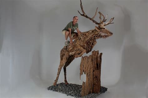 life size driftwood animal sculptures  james doran webb
