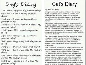 compare and contrast cats and dogs