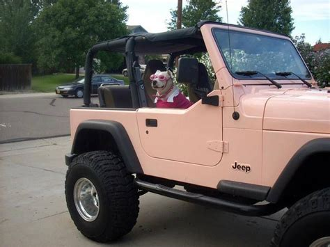 pink jeep 2 door jeep wrangler love it if it came with a dog too that d be