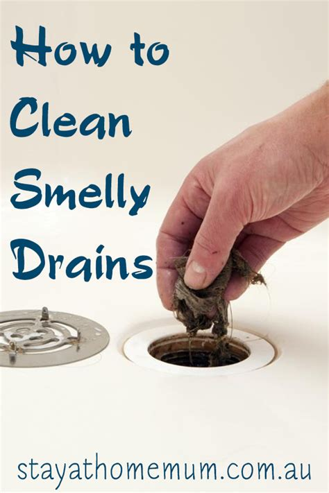 how to clean stinky kitchen sink drain how to clean smelly drains stay at home 9357