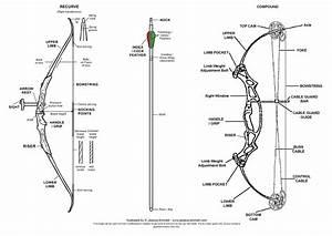 Archery Terms Diagram