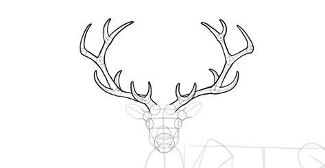 draw  deer step  step themekeepercom