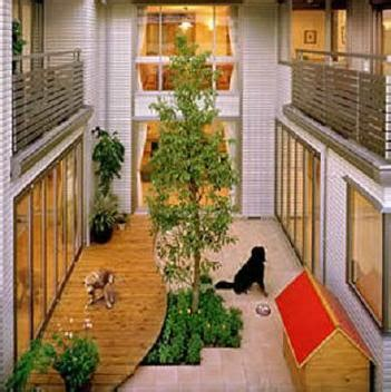 dog friendly home designs