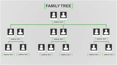 Powerpoint Genealogy Template by Family Tree Toolkit A Powerpoint Template From