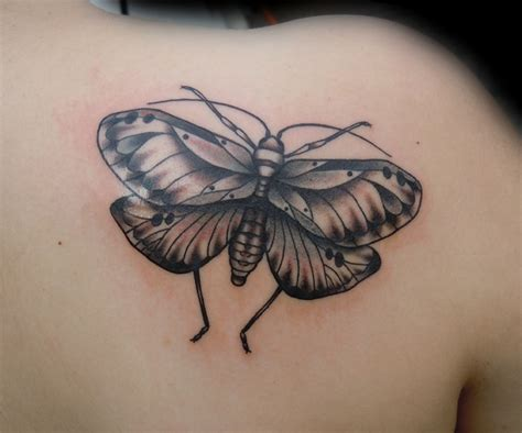 Images About Lark Tattoo Pinterest Butterfly