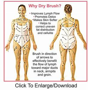 Image Result For Dry Brushing For Lymphatic Drainage