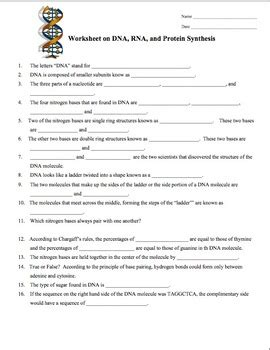 dna rna protein synthesis worksheet study guide by amy brown science