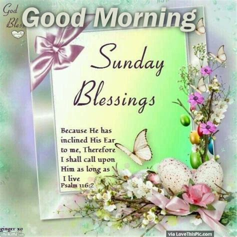 Sunday Blessings Images Morning Wishes On Sunday Pictures Images Page 3