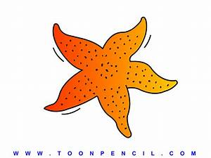 Starfish Drawing For Kids