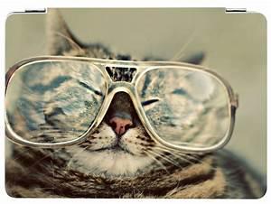 Katze Brille ich glaube die brille steht mir nicht ein