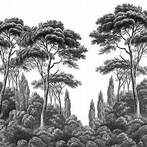 Papier Peint Arbre Noir Et Blanc : paysages gravures pins et cypr s noir et blanc 540x242 ultra mat 6 l s de 90cm ~ Nature-et-papiers.com Idées de Décoration