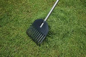 Small garden rake