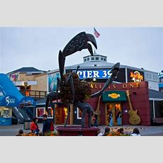 Pier 39pi Seafood At It's Finest Some Of The Bays Best Restaurants  The Checklist Sf