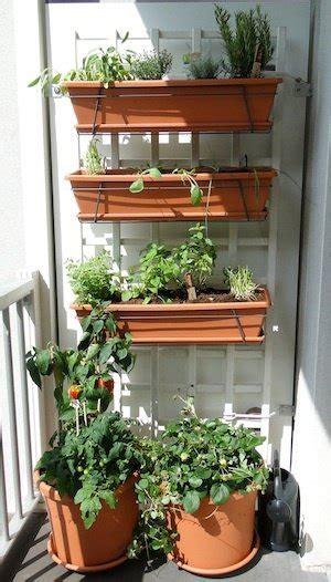 plants good   balcony garden  south