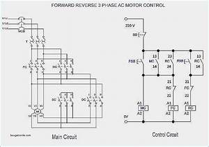 three phase induction motor wiring diagram With wiring diagram for 3 phase motor typical connection diagrams three