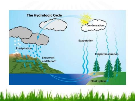 hydrological cycle   river flooding factors