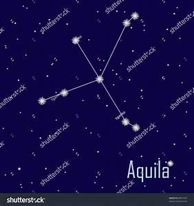 Constellation Aquila Star Night Sky Vector Stock Vector