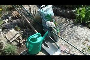 Dahlien Wann Pflanzen : video dahlien pflanzen so wird 39 s gemacht ~ Frokenaadalensverden.com Haus und Dekorationen
