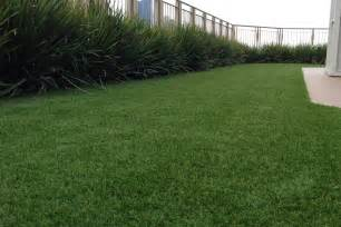 Synthetic Grass Artificial Turf