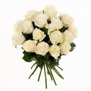 Welche Pflanzen Passen Zu Rosen : rosenstrauss mit weissen rosen im bund gemischt ~ Lizthompson.info Haus und Dekorationen