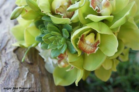 Sugar Bee Flowers Green Cymbidium And Succulent Bouquet
