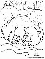 Cave Coloring Pages Bear Printable Getcolorings Print sketch template