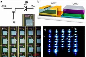 Organic Optoelectronic Circuit Of Ofet Driving Oled Arrays