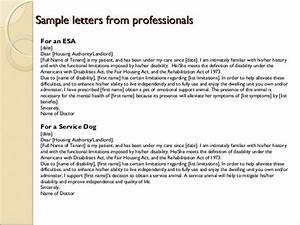 everything you need to know about getting an emotional With esa letter online