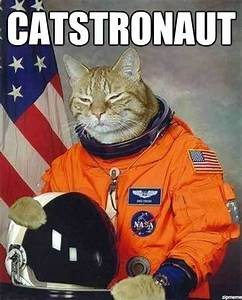 Cat Astronaut - Grumpy Cat Meme - See Funny Images ...