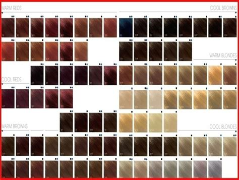 95 Topchic Color Chart Chart Photos
