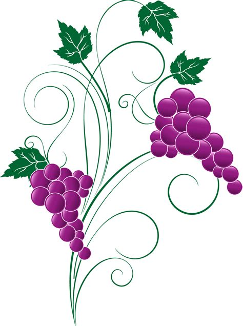 www clipart grape png transparent free images png only