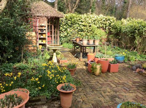 London Cottage Garden » Winter Colour  Gardening Blog