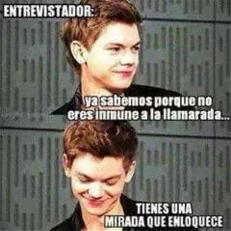 The Maze Runner Memes - 17 best images about maze runner on pinterest maze maze runner and thomas brodie sangster