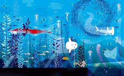 Ocean Illustrations Lucie Under Sea Illustration Charming