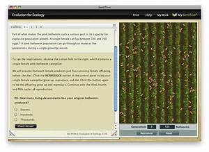 How Does Your Garden Grow Virtual Lab Answers - Garden Ftempo