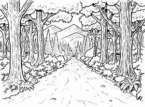 Forest Coloring Page | Printable coloring pages