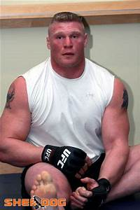 Brock Lesnar MMA Stats, Pictures, News, Videos, Biography ...