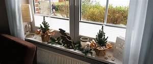 Feuchtigkeit Am Fenster : trendige plissees punkten als dekorative allesk nner am fenster ~ Watch28wear.com Haus und Dekorationen