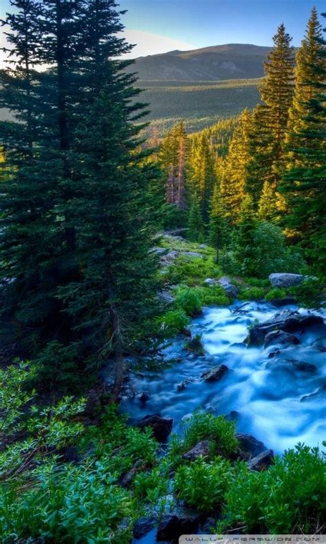 Animated Nature Wallpapers For Mobile Phones - best 25 mobile wallpapers hd ideas on